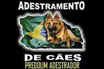 Adestramento de Cães Predolim