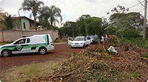 Fiscais da Coordenadoria de Limpeza Urbana fazem opera��o em parceria com a Patrulha