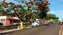 Coordenadoria de Limpeza Urbana agiliza roçada em áreas públicas