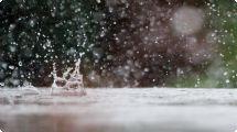 Primavera chega com chuva e máxima de 24 graus em Ribeirão